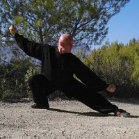 Coauch and martial arts master teaches internationally recognized qigong, tai chi, relaxation, meditation, self-healing in Mallorca and the rest of Spain, specialized in teaching