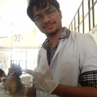 I am a doctor with passion for teaching. I can teach all basic sciences and advanced biology.