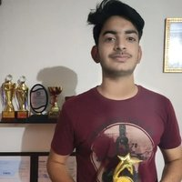 Engineering student with two gold medals in French willing to teach students in Delhi