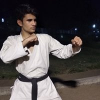 Holistic Trainer For Mixed Martial Arts, Karate and Kickboxing - Willing To Take Personal Training