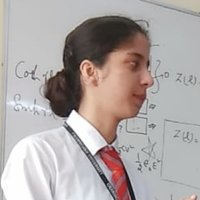 Student from chandigarh university gives tutions of maths ,physics and chemistry upto 12th level