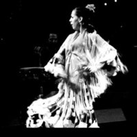Teacher offers to teach Sevillanas or Flamenco in Granada and surroundings all levels