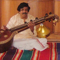 Veena south indian classical music instrument, vocal singing and theory qualified to teach